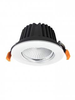 BRIGHTEYE EVO S Downlighter + COB LED